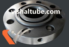 ASTM A105 Carbon Steel Ring Type Joint Flanges Supplier In India